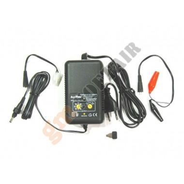 Carica e Scarica Batterie 500/1000