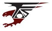 Falcon AirSoft